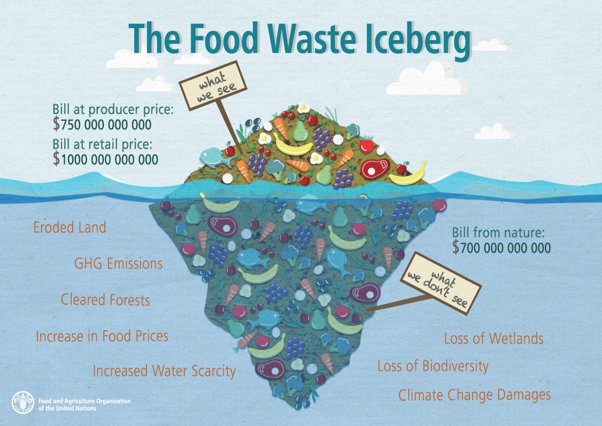 there are serious concerns over food waste environmental sciences essay Currently, environmental sustainability is a topical issue that receives plenty of attention from the media and from different governmental departments investors are equally aware of these issues and there is a trend developing towards investing in environmentally sustainable companies.